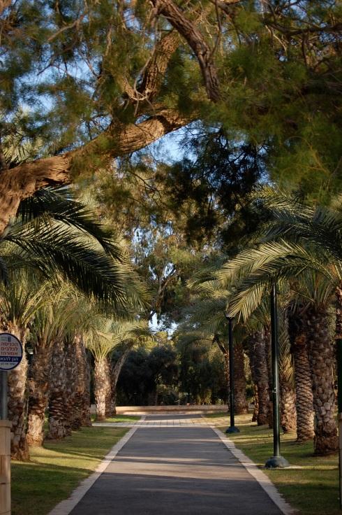 Vriesland Garden
