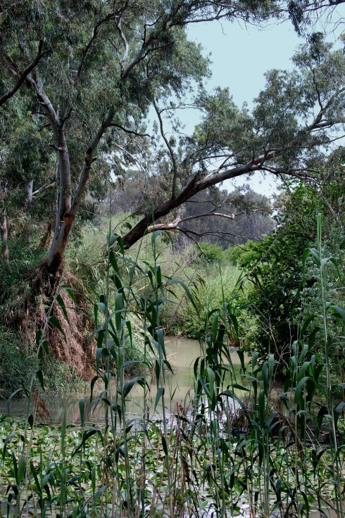 Source of the Yarkon River