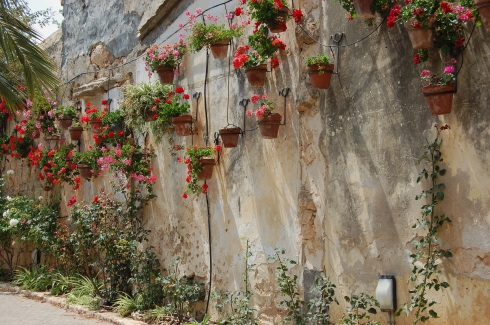 Wall bedecked with flower pots
