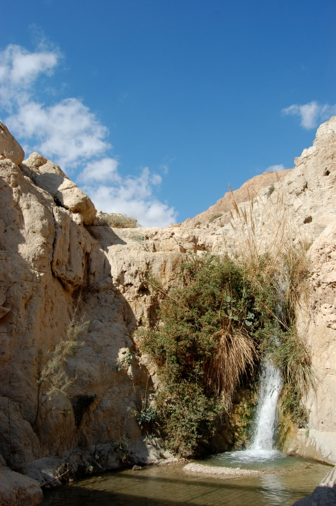 Waterfall in Wadi David