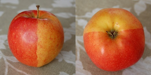 apple_split
