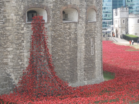 Phenomenal display of ceramic poppies at the Tower of London